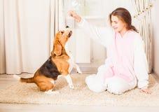 Amitié entre le chien et la fille Photographie stock