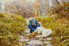 Amitié entre le garçon et le chien Photo libre de droits