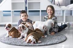 Amitié entre les enfants et les chiots mignons du bouledogue Images stock