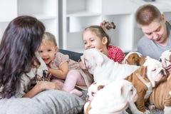 Amitié et dévotion du chien pour équiper le concept Images libres de droits