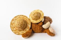 Amitié, ours de nounours se trouvant au soleil sous des chapeaux de paille, d'isolement Photo stock