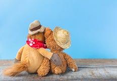 Amitié, ours de nounours tenant le cheval de peluche dans des ses bras Photos libres de droits
