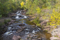 Amity Creek Step Falls. A creek with small waterfalls in early autumn Royalty Free Stock Photos