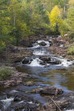 Amity Creek Step Falls. A creek with small waterfalls in early autumn Royalty Free Stock Image