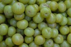 Amla bär frukt på indisk öppen marknad arkivfoto
