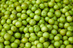 Amla fruits on indian open market Royalty Free Stock Image