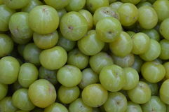 Amla fruits on indian open market Stock Photo