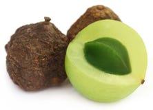 Amla owoc wysuszone i zielone - Obraz Stock