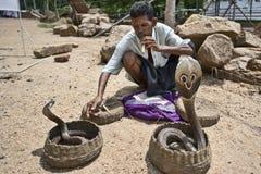 Ammaliatore della cobra Fotografie Stock Libere da Diritti
