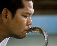 Ammaliatore di serpente Immagini Stock
