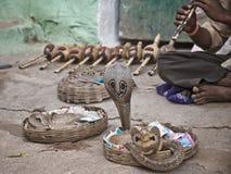 Ammaliatore di serpente in India Fotografia Stock