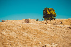 Amman Citadel area, Jordan. Archaeological site. Tourism industry. Summer vacation. Travel concept. Tourist attraction. Sightseein Stock Photography
