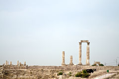 amman citadel jordan royaltyfria bilder