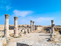 amman citadel roman jordan Royaltyfria Foton