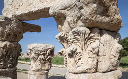 Amman city landmarks-- old roman Citadel Hill,  Jordan Royalty Free Stock Photos