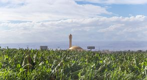 Mosque with a minaret in a small roadside settlement near the capital of Jordan - Amman stock photography