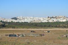 Amman la capitale de la Jordanie Photographie stock libre de droits