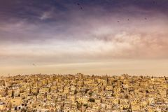 Amman old city with kites. Amman, Jordan, view of the old city, a large complex of decaying buildings overlooking the citadel located on Jabal Al Qal`a. Kites in stock image