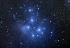 Ammasso stellare di Pleiades Fotografia Stock Libera da Diritti