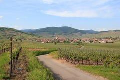 Ammerschwihr dans le vignoble d'Alsace Photos stock