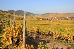 Ammerschwihr dans le vignoble d'Alsace Image libre de droits