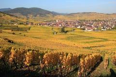 Ammerschwihr dans le vignoble d'Alsace Images stock