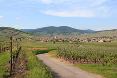 Ammerschwihr in the vineyard of Alsace Stock Photos