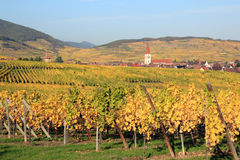 Ammerschwihr in the vineyard of Alsace Royalty Free Stock Image