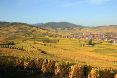 Ammerschwihr in the vineyard of Alsace Royalty Free Stock Photos