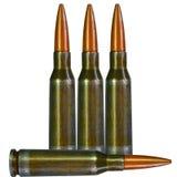 ammo royaltyfri bild