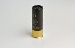 ammo Fotografia de Stock Royalty Free