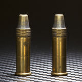 Ammo pair Stock Image