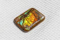 Ammolite美好的片断  免版税库存图片