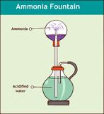 Ammoniakbrunnenexperiment, zum der Löslichkeit von amm zu demonstrieren Stockfotos