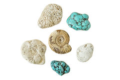 Ammonite and turquoise isolated on a white background Stock Photos