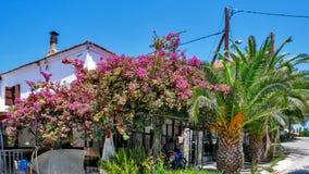 AMMOULIANI, CHALKIDIKI, GRÉCIA - 27 DE JULHO DE 2012: Rua e casas na ilha de Ammouliani, Athos, Chalkidiki, Gree Foto de Stock Royalty Free