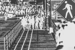 Ammucchiato sul passaggio pedonale in bianco e nero Fotografia Stock Libera da Diritti