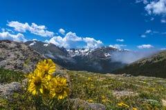 Aménagez en parc avec le ciel bleu et les arbres dans le Colorado Photos stock