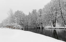 Aménagez la scène-rivière et les arbres en parc Nuremberg, rivière Pegnitz de neige de l'Allemagne Image stock