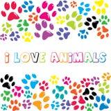 Amo animales mando un SMS con la impresión colorida de las patas Fotos de archivo