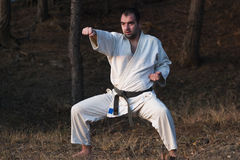 Amo de los artes marciales fotos de archivo