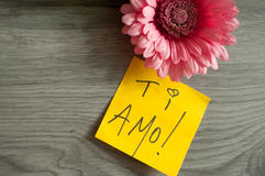 AMO de Ti de note d'amour ! Image libre de droits