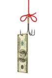 Amo e soldi di pesca Fotografie Stock