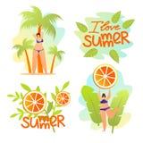 Amo el sistema de las banderas del verano Humor del verano, centro turístico ilustración del vector