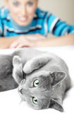 Amo i gatti Fotografia Stock