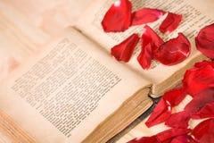 Amo i libri Fotografie Stock Libere da Diritti