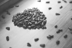 Amo i semi di girasole fotografia stock libera da diritti