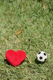 Amo il calcio Fotografia Stock Libera da Diritti