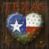 Amo il Texas Immagine Stock