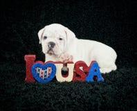 Amo l'America Fotografie Stock